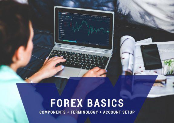 ForEx Trading Basics Course